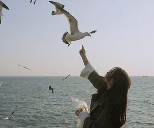 girl, bird, and ocean image