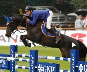 horses, Mexico City, and rider image
