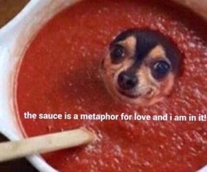 meme, dog, and love image