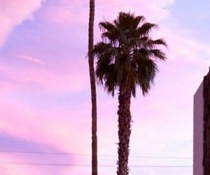 summer, pink, and sky image