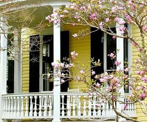 cherry blossoms, farmhouse, and farmhouse exterior image