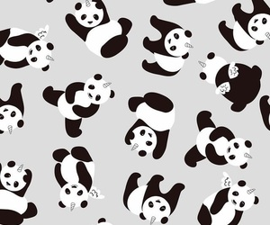 black and white, pandicorn, and panda image