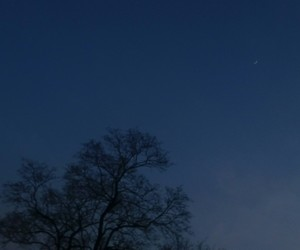 alone, evening, and moon image