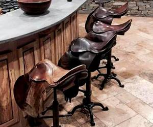bar and saddle image