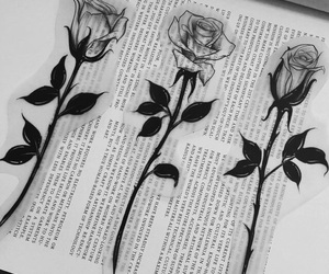 black, book, and rose image