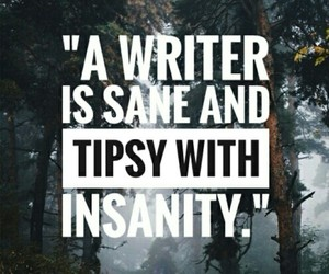 insanity, poems, and quotes image