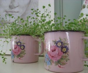plants, pink, and flowers image