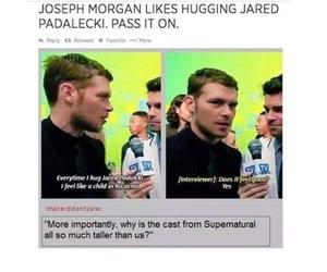 jared, joseph, and morgan image