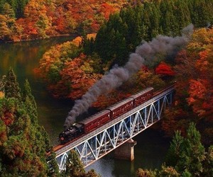 autumn, train, and forest image