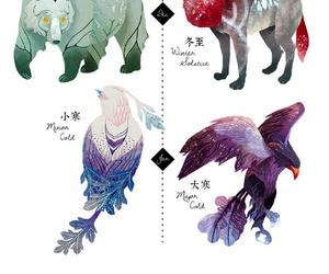animals, bear, and eagle image
