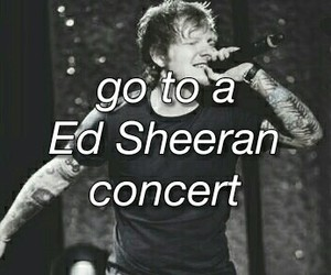 concert, music, and bucket list image