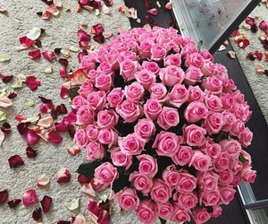 rose, pink, and bouquet image