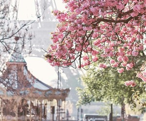nature, paris, and spring image