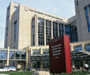 chicago, hospital, and university image