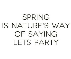 nature, party, and spring image