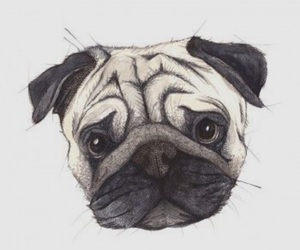 adorable, art, and drawing image
