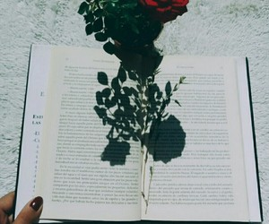 aesthetic, books, and grunge image