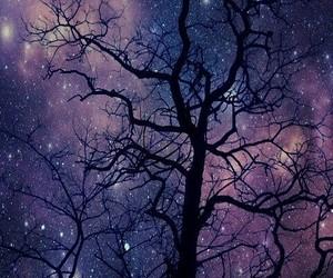 tree, night, and dark image