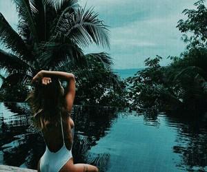 aqua, palm, and beautiful image