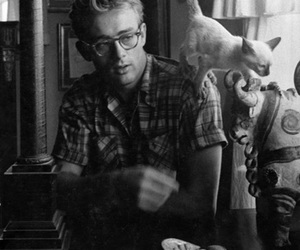 cat and james dean image