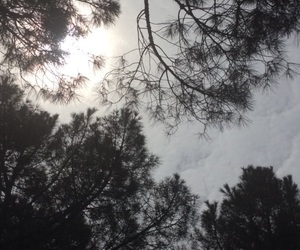 snapshot, partly cloudy, and sun image