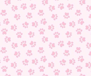 background, cute, and paws image