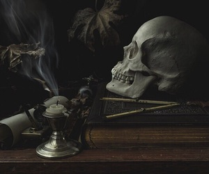 dark, nature, and skull image