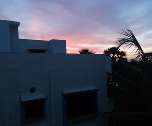 palm trees, pink skies, and skyline? image