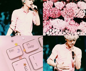 moodboard, chanyeollie, and pink image
