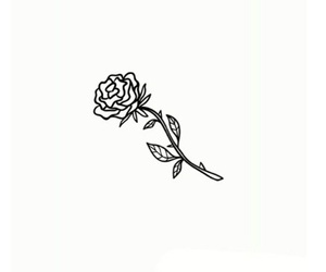 black and rose image
