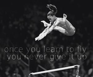 gymnastics and fly image