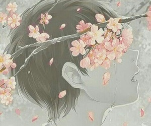 anime, boy, and sakura image