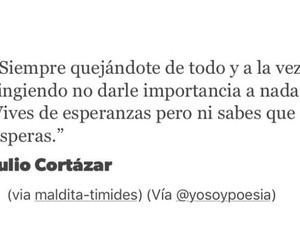 frases, julio cortazar, and vida image
