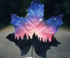 art, galaxy, and leaf image