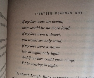 book, quotes, and 13 reasons why image