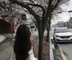 spring, ulzzang, and korean image