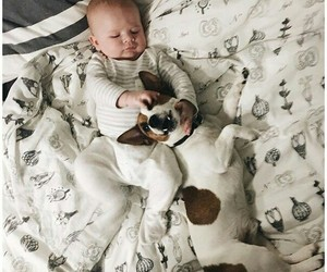 baby, smile, and dog image