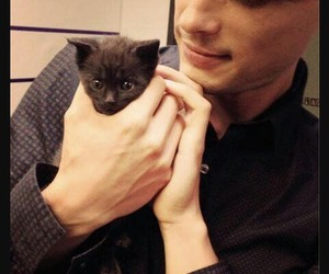matthew gray gubler, cat, and criminal minds image