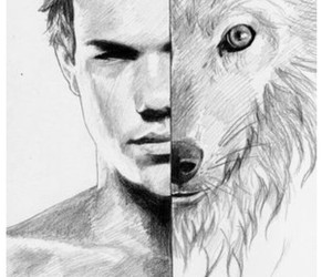 jacob, Taylor Lautner, and twilight image