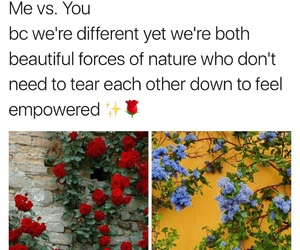flowers, beautiful, and woman image