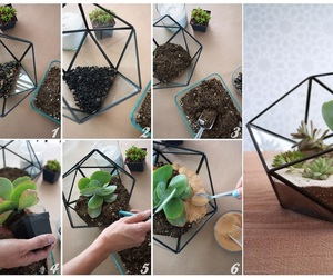 cactus, diy, and do it yourself image