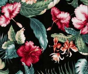 tropical, floral, and hippie image