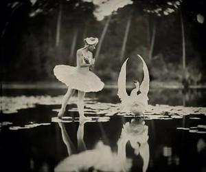 Swan, ballerina, and ballet image
