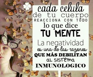 amor, frases, and positiva image