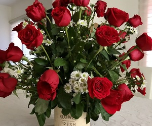 flowers, romantic, and roses image