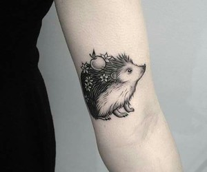 tattoo and hedgehog image