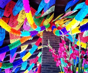 color, colores, and fiesta image