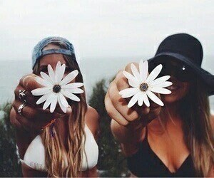 flowers, friends, and summer image