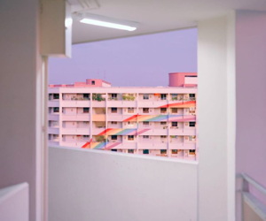 rainbow, pink, and building image