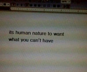 quotes, human, and tumblr image
